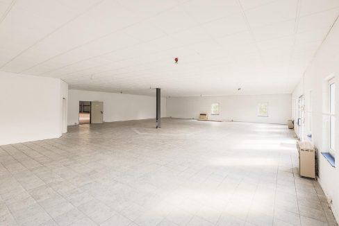 300qm Ausstellungshalle mit Raumteiler -1